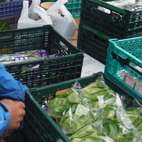 袋詰めされた野菜