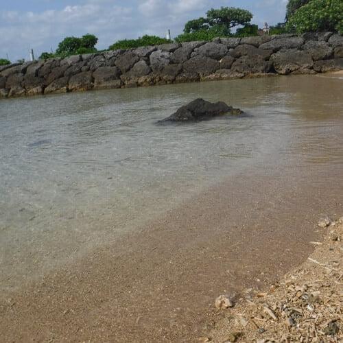 海に来ました